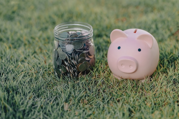 Piggy bank and money jar placed on the lawn