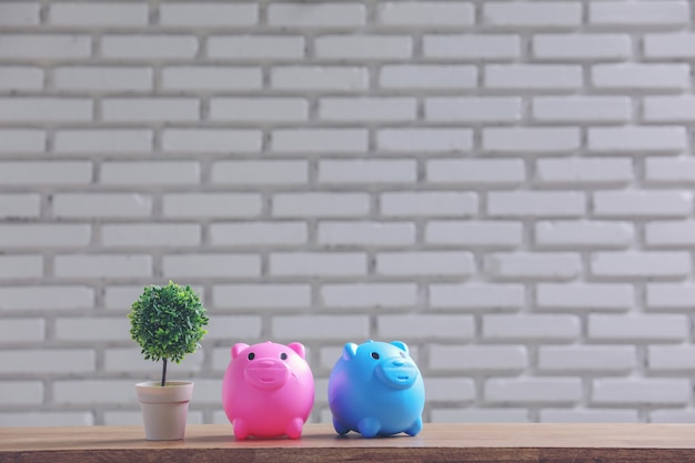 Piggy bank and pot on the table with white wall.