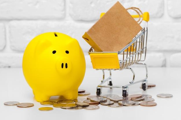 Piggy bank save coin