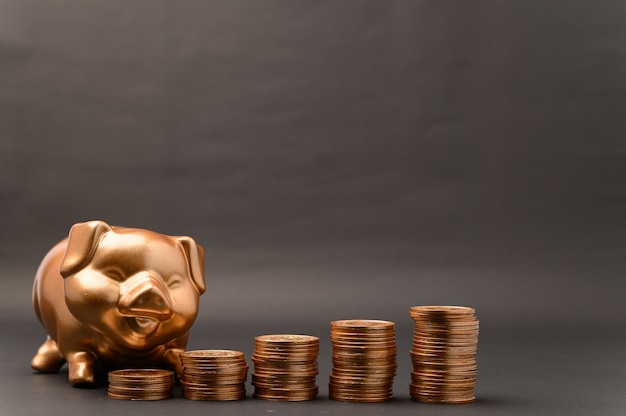 Piggy bank showing savings, income, investments, stocks