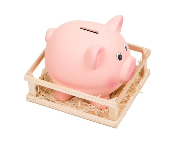 Piggy bank in small wooden corralling, isolated on white background