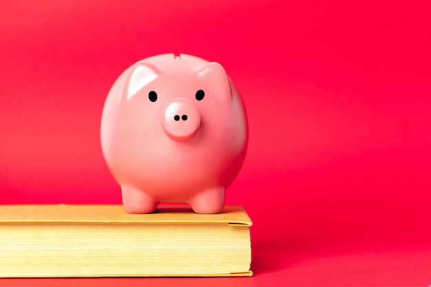 Piggy bank on a stack of book