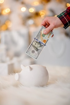 Piggy bank with 100 dollars banknote