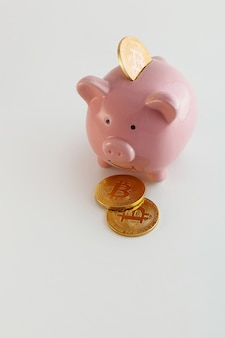 Piggy bank with bitcoin coins on isolated white background