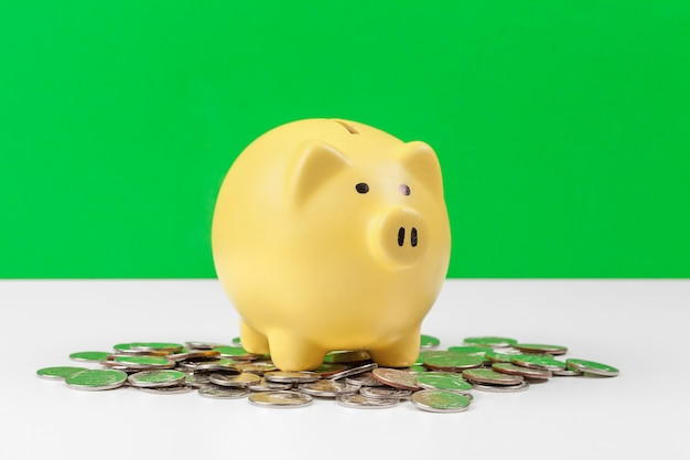 Piggy bank with coin on the table