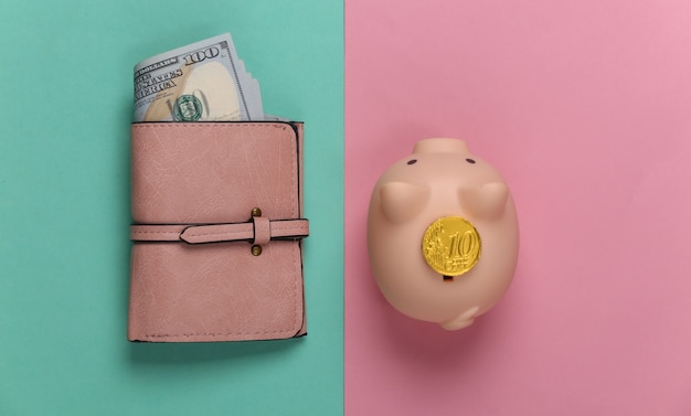Piggy bank with a coin, wallet with hundred-dollar bills on a blue-pink pastel. family budget, savings