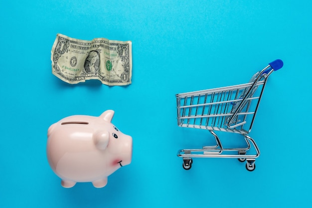 Piggy bank with a crumpled dollar bancnote and shopping cart on blue scene