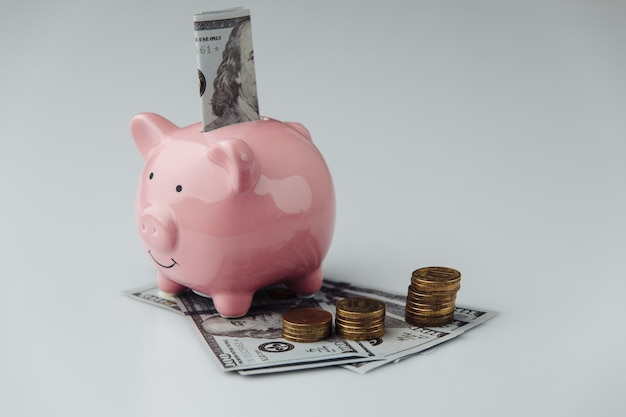 Piggy bank with dollar banknotes and coins