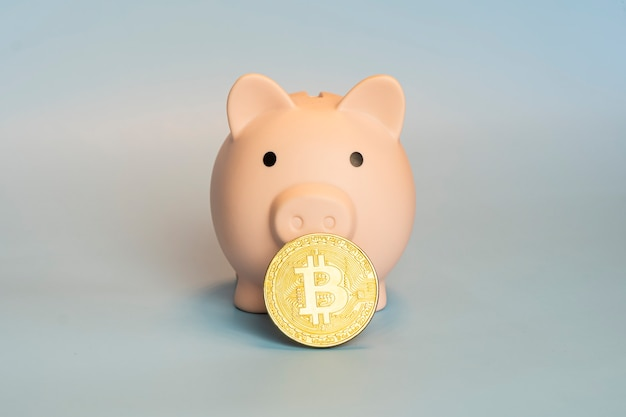 Piggy bank with one golden bitcoin coin new virtual money on a gray background