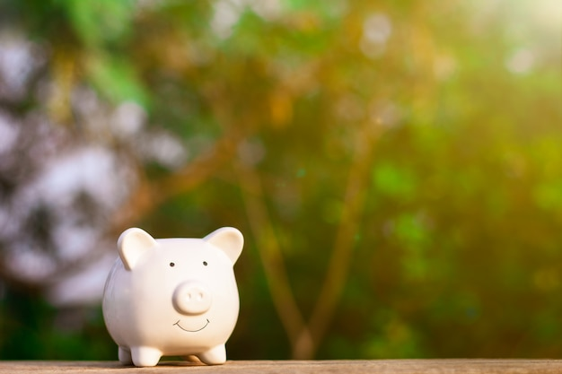 Piggy bank on wooden table. - save and management concept.