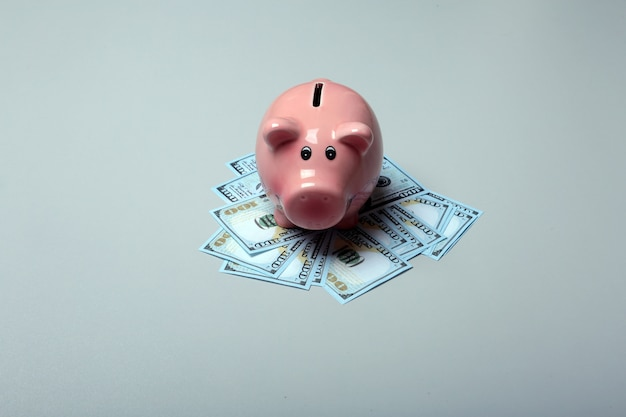 Piggy box bank with dollars isolate on gray background