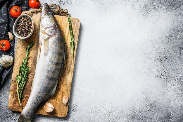 Судак, рыба судак