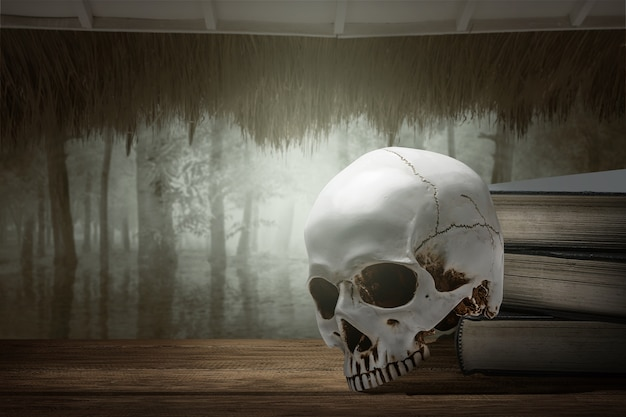 Pile of the book with a human skull with haunted forest