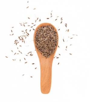 Pile of caraway seeds isolated on white