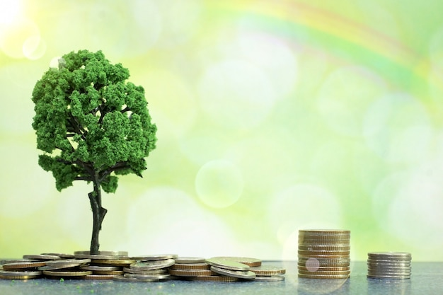 Pile of coins with a growing green tree with sunlight and rainbow on beautiful day