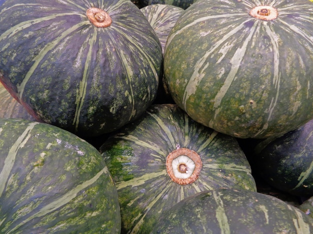 Pile of dark green tropical pumpkins for background or banner