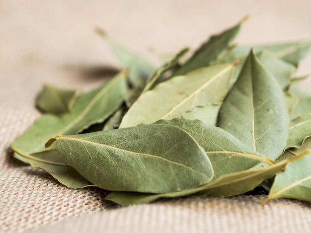 Pile of dry laurel leaves