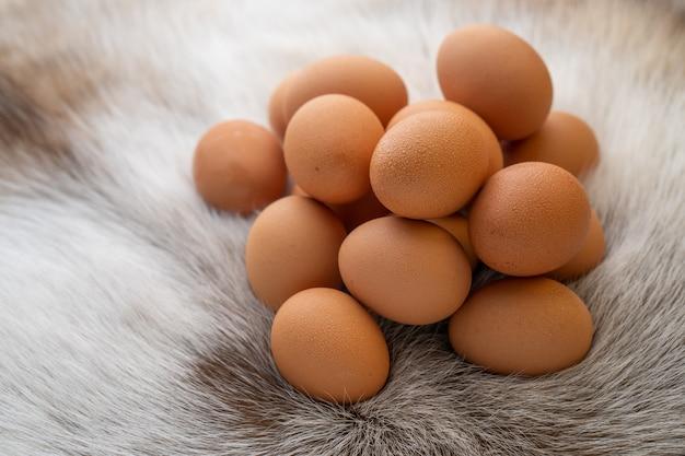 Куча яиц на меху