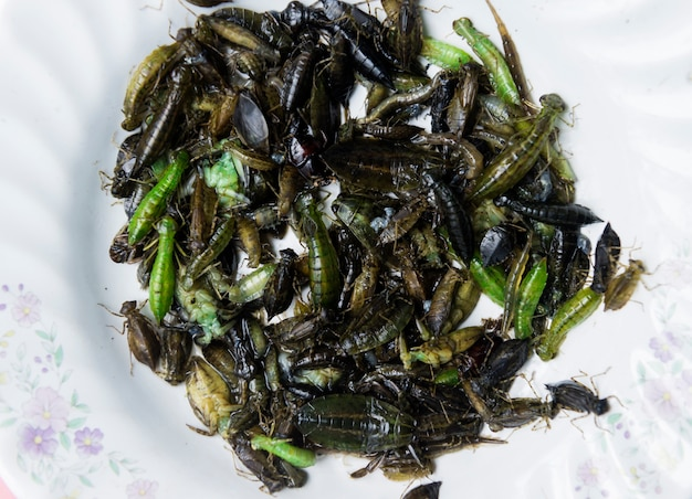 Pile of fly larvae on plate.