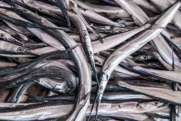 Pile of fresh garfish, belone belone, needlefish, for sale on the fishmonger, outdoor seafood market.
