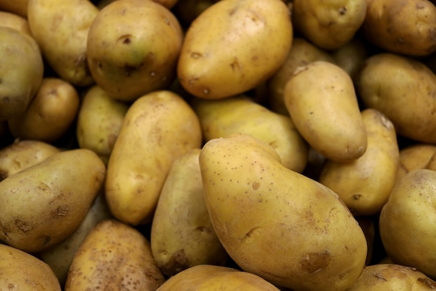Pile of fresh law potatoes with selective focus