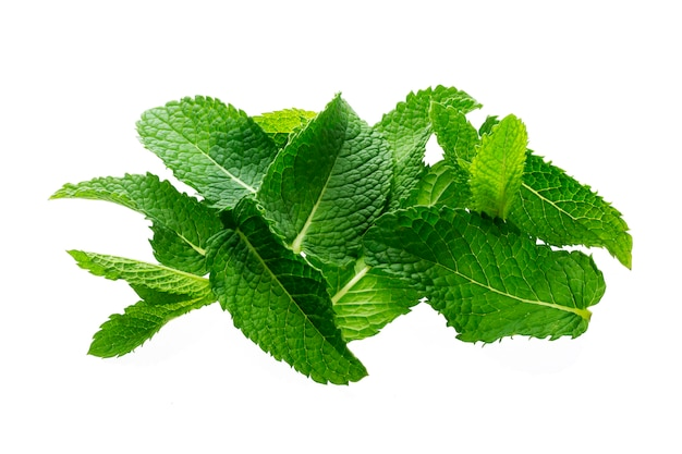 Pile of mint leaves isolated on white background, top view