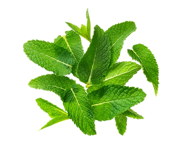 Pile of mint leaves isolated on white background