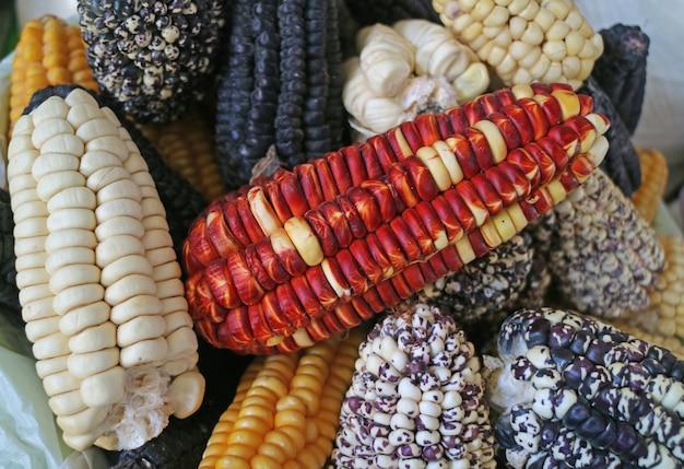 Pile of multi-color peruvian corns for sale in the local market of cusco, peru
