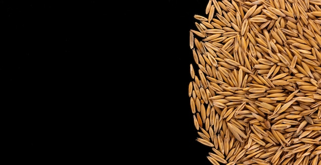 Pile of oat seeds on black background, copy space, top view