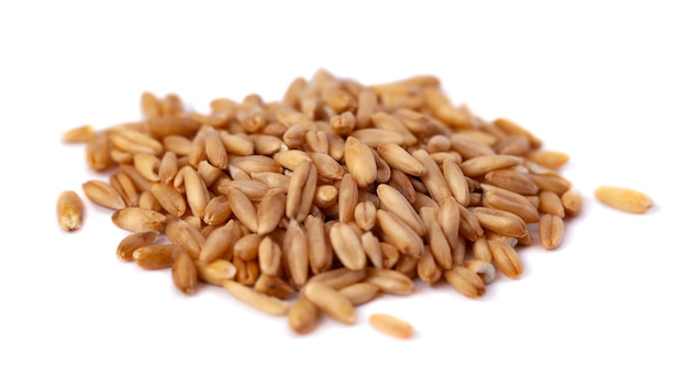 A pile of oat seeds isolated on white background