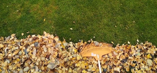 Куча осенних листьев с вентиляторными граблями на лужайке.