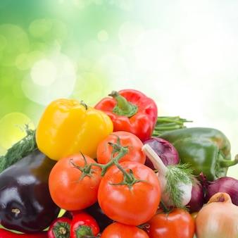 新鮮なロープ野菜の山-トマト、タマネギ、ピーマン、カボチャ、ナス
