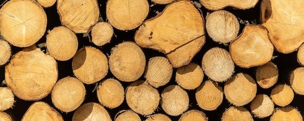 収穫された木の丸太の山、質感