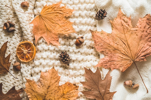 秋のニット服の山の葉、秋冬のコンセプトです。