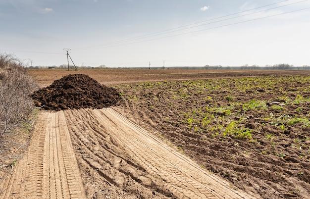 Куча навоза, сброшенная на поле фермером для удобрения сельскохозяйственных угодий для следующего урожая. сельское хозяйство
