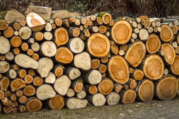 天然木の丸太の山