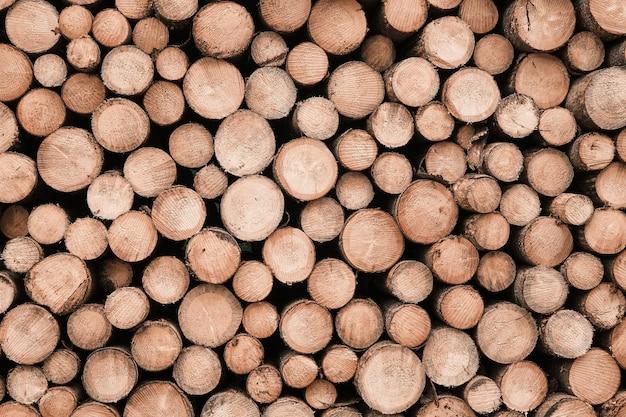 木の山の丸太の背景。丸い木の質感。冬、生産または加工のために切りたての木の木の丸太。
