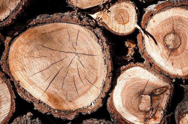 서로의 위에 함께 쌓인 나무 통나무 더미. 목재 질감