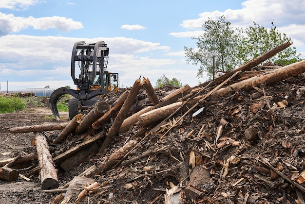 Pile of old logs intended for recycling and grapple skidder on the background