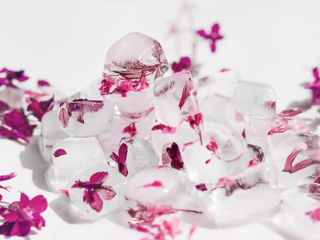 Pile of pink flowers in ice cubes