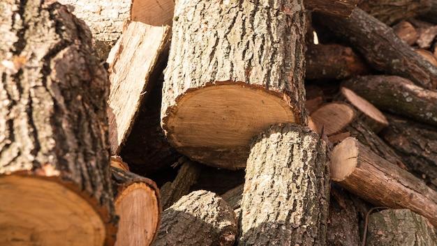 Pile of sawed wood