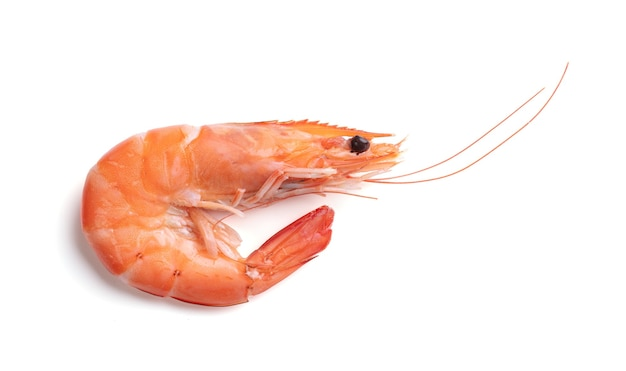 Pile of shrimps cut out isolated