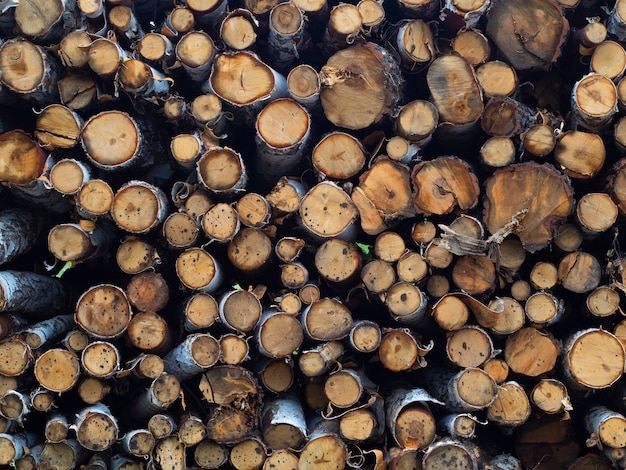 Pile stacked natural sawn wooden logs background - deforestation. close-up view.