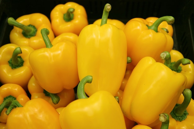 Pile of vibrant yellow fresh ripe bell peppers with green stems