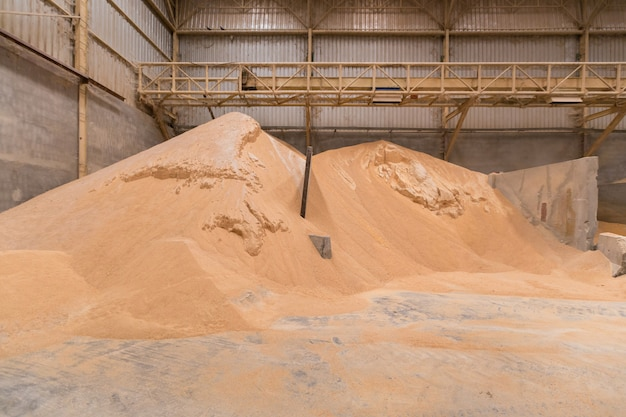 Pile of wheat bran, raw material storage, storage of raw materials. animal feed industry.