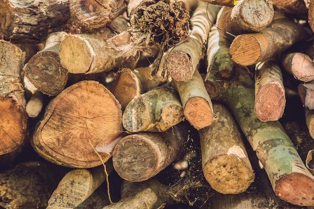 Pile of wood logs outside