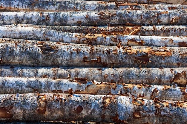 丸太の山は屋外にあります。材木倉庫。高品質の写真