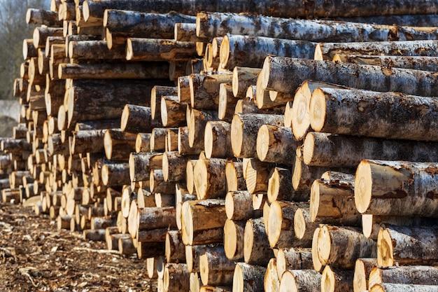 丸太の山は屋外の材木倉庫にあります