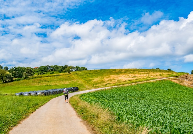 Паломник с рюкзаком гуляет по камино-де-сантьяго в испании, камино-дель-норте, путь святого иакова