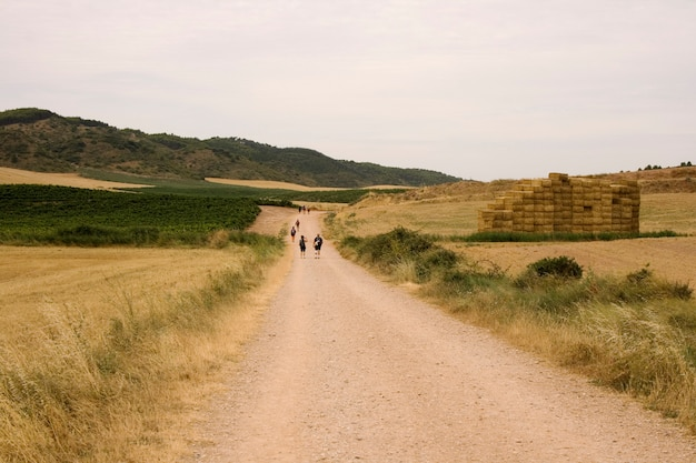 Pilgrims; way of st. james